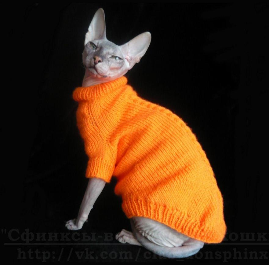 Вязание кофты для кошек